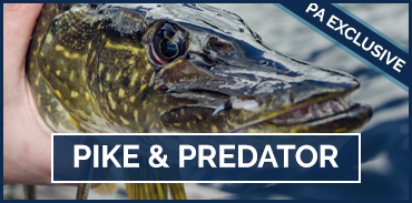 Pike and Predator